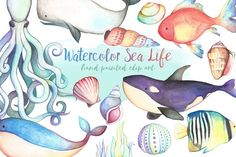 Watercolor Sea Life Clipart Bundle by Kenna Sato Designs on Wave Clipart, Beach Clipart, Mermaid Clipart, Summer Clipart, Flower Clipart, Vector Clipart, Watercolor Ocean, Watercolor And Ink, Pencil Illustration