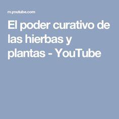 El poder curativo de las hierbas y plantas - YouTube