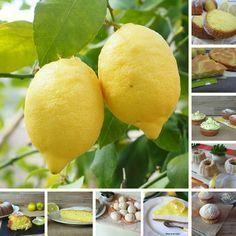 Dolci al limone Ricette Veloci. Una raccolta di dolci con un ingrediente principale: il Limone. Sono tutti dolci semplici e veloci