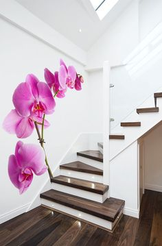 interior design, wall decor, idea, stairs, architecture interiors, wall decals, wall murals, homes, white wall