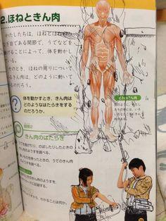 « shingeki no kyojin random memes Anime Meme, M Anime, Funny Anime Pics, Otaku Anime, Cool Animes, Haha Funny, Funny Memes, Hilarious, Attack On Titan Meme