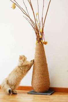 DIY vase scratching post. Make a cat scratcher out of old vases. Multifunctional beautiful cat scratcher.