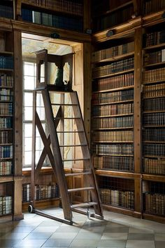 Beautiful shelves with a library ladder! And is that a slate floor...?