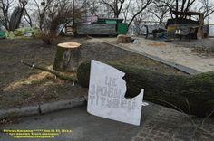 тітушки попилили дерева в Маріїнському парку? Евромайдан 23 февраля 2014 года. Владимир Филиппов