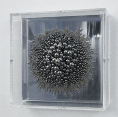 Alyson Shotz : Magnetic Force #1 2009