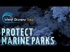 This video is from the sponsor's website: www.oneworldoneocean.org.-->World Oceans Day - Celebrate Marine Parks