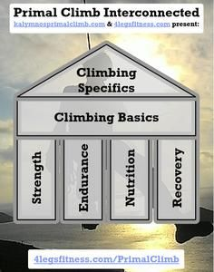 Learn and improve upon mental and physical climbing skills and additionally integrate the knowledge to transform your health based on the four pillars of fitness: strength, cardio, nutrition and recovery. Fitness Programs, Workout Programs, Online Personal Training, Training Plan, Climbing, Cardio, Recovery, Strength, Health Fitness