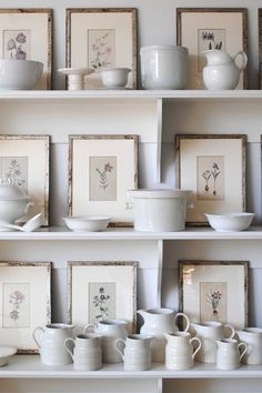 Display by Loi Thai, Tone on Tone Impressions Botaniques, Best Food Photography, Table Setting Inspiration, Fresh Farmhouse, Ivy House, Vintage Botanical Prints, Display Shelves, Home Goods, Home Improvement