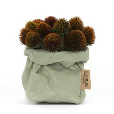 Plant or flower bag