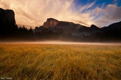 Yosemite Valley Fog