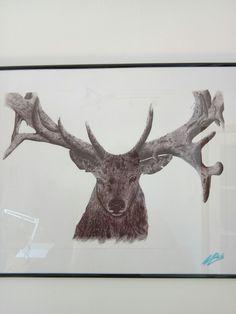 #muresandavid #deer #pen #draw