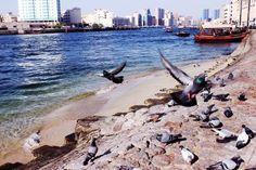 A walk along Dubai Creek - Dubai Guide - Travel Blog | Mitzie Mee