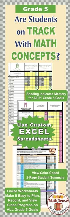This comprehensive EXCEL product includes math goals for all - excel assessment