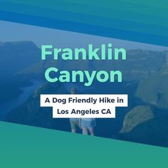 5 Dog Friendly Hikes in Los Angeles California. Hiking's are a fantastic means to hang out with your pooch. These are little suggestion before dog hike. Places In California, California Travel, Northern California, Hiking Dogs, Hiking Gear, Hiking Trails, Hikes In Los Angeles, Los Angeles Travel, Pet Travel Carrier
