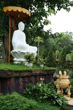 Buddha garden.