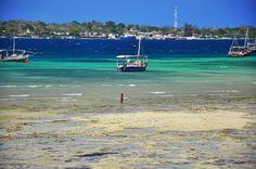 Kenya - Wasini Island