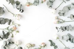 Floral frame with roses & eucalyptus by Floral Deco on @creativemarket