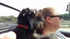 Eirian-Alberta-Zoe bein Cabriolet fahren