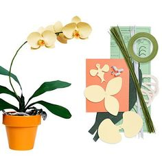 paper orchid pattern