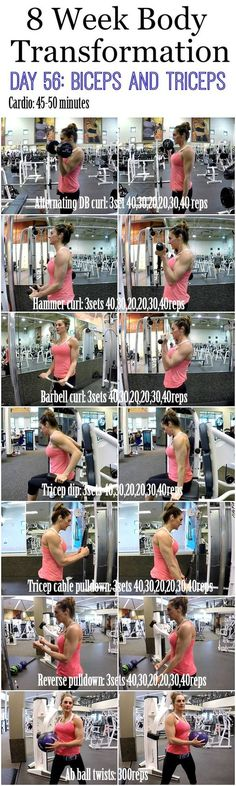 Build bigger biceps with this one trick 8 Week Body Transformation: Day 56 BICEP and TRICEPS | Fitness Food Diva |