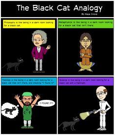 Epistemologies: The Black Cat Analogy
