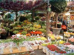 Floral Shop Basics