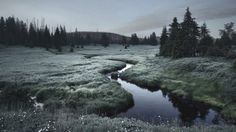 Eerie, Wild Scenes Straight Out of Grimm's Fairy Tales |  Bohemian Forest low mountain range, Czech Republic. | Credit: Photo: Kilian Schönberger | From Wired.com