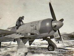 Hawker Tempest Air Force Aircraft, Navy Aircraft, Ww2 Aircraft, Fighter Aircraft, Military Aircraft, Fighter Jets, Hawker Tempest, Hawker Typhoon, The Spitfires
