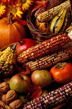Fall Decor i have no idea were wed put something like this but its very pretty and festive