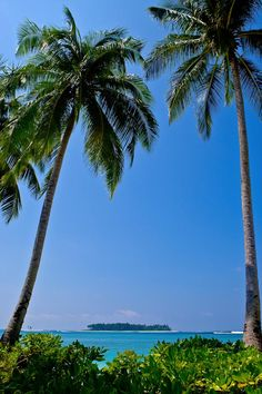 10 beautiful beaches around the world: Porto da Barra Salvador Brazil