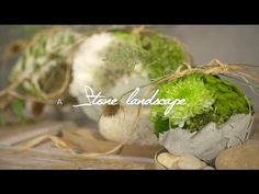 A Stone Landscape by Klaus Wagener | Flower Factor How to Make | Powered...