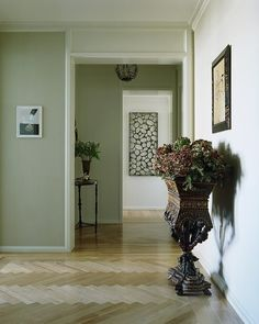 Similar paint color for the living room
