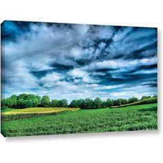 ArtWall Steve Ainsworth Field of Dreams Gallery-Wrapped Canvas, Size: 16 x 24, Green