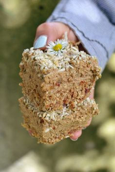 Vegan Lemon Hemp Protein Bars | http://www.radiantrachels.com/lemon-protein-bars/