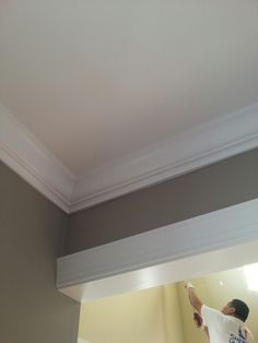 Functional gray sw7024 by Sherwin Williams applied by Brackens Painting in Northern Virginia.