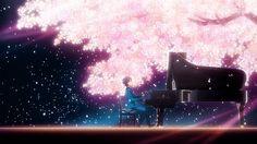 Arima Kousei, playing piano, sakura tree, gif; Your Lie in April