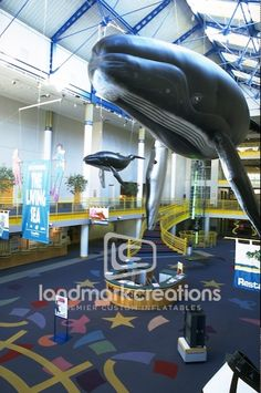 Inflatable Mother & Daughter Humpback Whales #whale #inflatables #childrensmuseum #museum