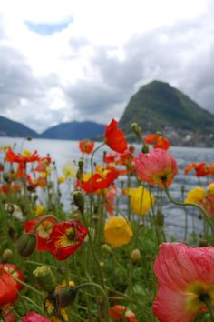 Lugano, Switzerland  - been there, loved it!