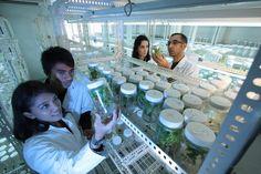 """Las grandes ideas científicas a menudo trascienden el alcance de una sola  disciplina, impulsando y acelerando el descubrimiento científico. Sin  embargo, la investigación interdisciplinaria no es fácil de alcanzar,  especialmente en grandes universidades donde es más común encontrar """"islas"""