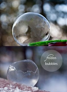 Blow a bubble, catch it on your wand, and watch it freeze.  We're trying this as soon as it gets cold.