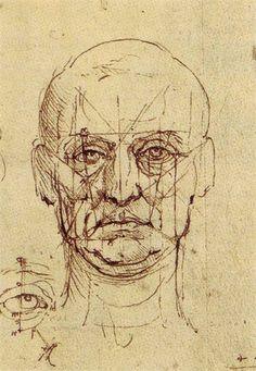 Пластическая анатомия - теория и практика