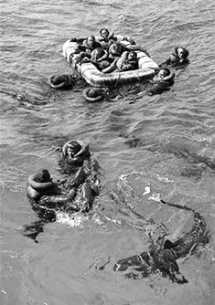 Sharks Attacking USS Indianapolis Survivors