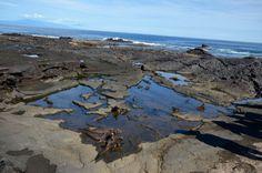 santiago island in the Galapagos