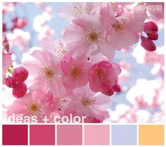 IDEAS + COLOR Paleta de color para inspirarse http://jmpdesign.com.ar/ideas-color-09/