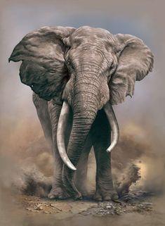 Elephant Artwork, Elephant Pictures, Elephants Photos, Animal Pictures, Wildlife Paintings, Wildlife Art, Animal Paintings, Animal Drawings, Most Beautiful Animals