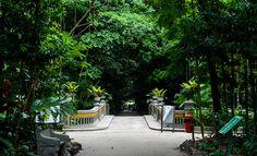 Jardim Botânico Bosque Rodrigues Alves, Belém, Pará, Brasil