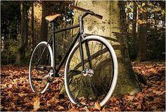 WOOT BIKES - http://www.gadgets-magazine.com/woot-bikes/