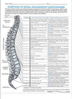 Chiropractic chart youthfulimage   http://media-cache5.pinterest.com/upload/228628118553274498_yVBsBGUa_f.jpg