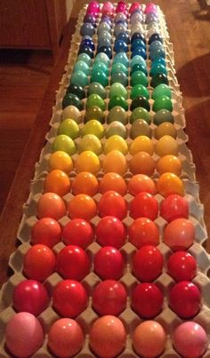 Rainbow spectrum of coloured eggs Rainbow Food, Love Rainbow, Taste The Rainbow, Over The Rainbow, Rainbow Colors, Rainbow Things, Rainbow Stuff, World Of Color, Color Of Life