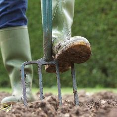 How to Start a Garden..Create an attractive planting bed for growing flowers, fruits or vegetables with this simple, eight-step process that takes you from planning through soil preparation.